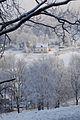 Czerniawa Zdrój - panoramio (41).jpg