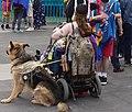 DUBLIN 2015 LGBTQ PRIDE FESTIVAL (PREPARING FOR THE PARADE) REF-106208 (19211187442).jpg