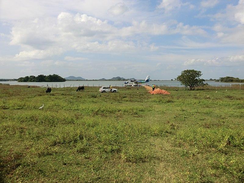 File:Dambulla, Sri Lanka - panoramio (80).jpg