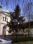 Danilov monastery 12