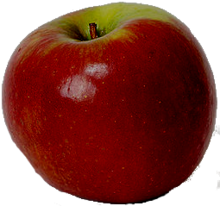 Dark apple.png