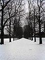 Decksteiner Weiher im Winter - panoramio - rucksackkruemel.jpg