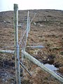 Deerfence on Aisgerbheinn - geograph.org.uk - 657070.jpg
