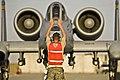 Defense.gov News Photo 091227-F-9171L-077.jpg