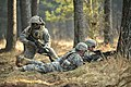 Defense.gov News Photo 120322-A-HE359-058 - U.S. Army soldiers with India Company 3rd Squadron 2nd Cavalry Regiment move through the terrain during a situational training exercise at the.jpg