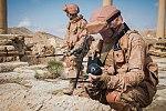 Demining of Palmyra 2017 14.jpg