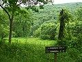 Dennison Run - panoramio (1).jpg