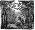 Die Gartenlaube (1858) b 573.jpg