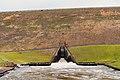 Dierks Lake Dam, Arkansas (32564831637).jpg