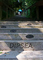Dispea Race - first stairs.jpg
