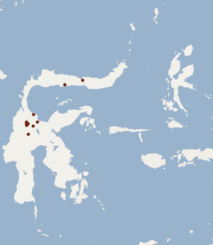 Central Sulawesi spiny rat - Image: Distribution of Echiothrix centrosa