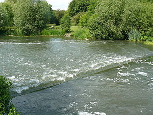 Dobbs Weir - Weir pool and bankside
