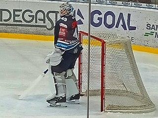 Dominik Hrachovina Czech ice hockey player