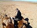 Dornogovi Province - Mongolia (6248266951).jpg