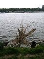 Driftwood4 (143649667).jpg