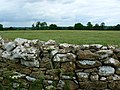 Drystone wall near St Catherine - geograph.org.uk - 479029.jpg