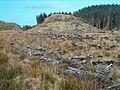 Dun in Kilmartin Forest - geograph.org.uk - 157354.jpg