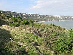 East Cliffs and Warren Country Park - geograph.org.uk - 1287581.jpg