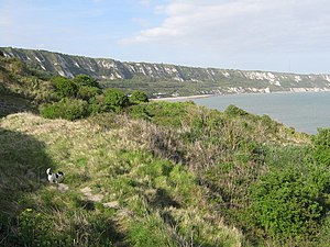 East Cliff and Warren Country Park - Image: East Cliffs and Warren Country Park geograph.org.uk 1287581