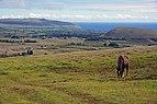 Easter Island 4.jpg