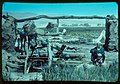 Egypt. Agriculture. Primitive irrigation wheel LOC matpc.23086.jpg