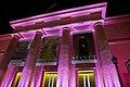 El MNBA de rosa, contra el cáncer de mama (21859132619).jpg