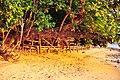 El Nido, Palawan, Philippines - panoramio (32).jpg
