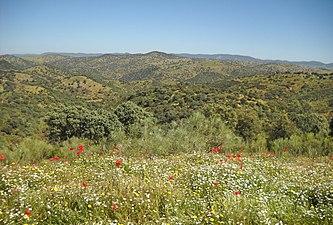 El Valle de Alcudia en primavera.jpg
