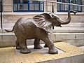 Elephant and LSE.jpg