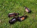 Empty beer bottles on grass.jpg