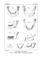 Encyclopédie méthodique - Systeme Anatomique, Pl23.png