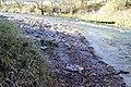 Erlauf-Ufer - panoramio.jpg