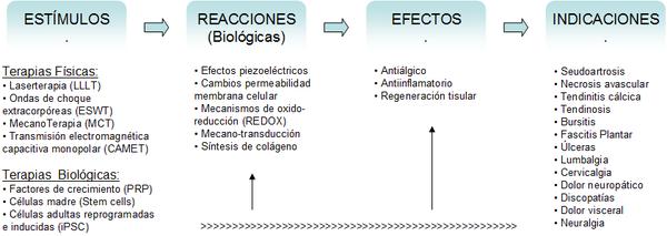 Biofisioterapia - Wikipedia, la enciclopedia libre