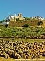 Estremoz - Portugal (8584641861).jpg