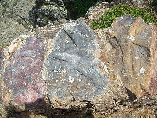 Fóssil em Penha Garcia