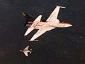 F-5E and F-4S during air combat manuvering in 1982.jpg