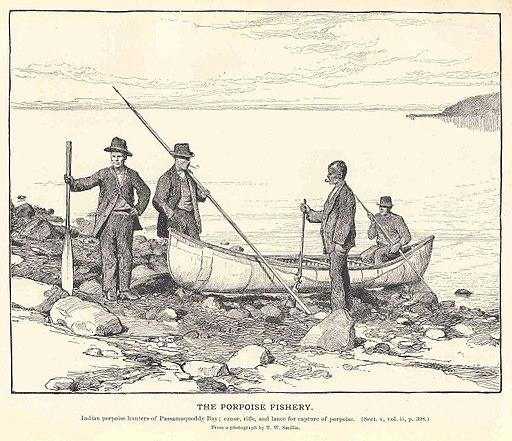 FMIB 35839 Porpoise Fishery