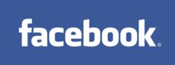 Taringa - Facebook - Internet en datos en todo el 2010