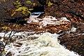 Fall Rush (1450174820).jpg