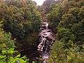 Falls of Clyde (29398087134).jpg