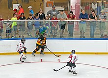 A hockey player in a black uniform with a puck on his stuck is confronted by two opponents in white near the wall of the rink. Above him, adults and children variously dressed in warm-weather clothing such as T-shirts, shorts and sandals watch them closely from between the glass and netting behind it