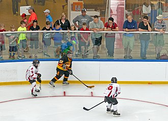 Sport in Canada - Image: Fans watching summertime youth hockey tournament at West Edmonton Mall Ice Palace