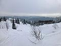 Feldberg in winter (6).jpg