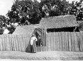 Fenerive, ö. Madagaskar. Typiskt staket med port av bambu - SMVK - 001655.tif