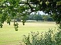 Fields near Weston Common - geograph.org.uk - 242611.jpg
