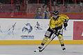 Finale de la coupe de France de Hockey sur glace 2014 - 046.jpg
