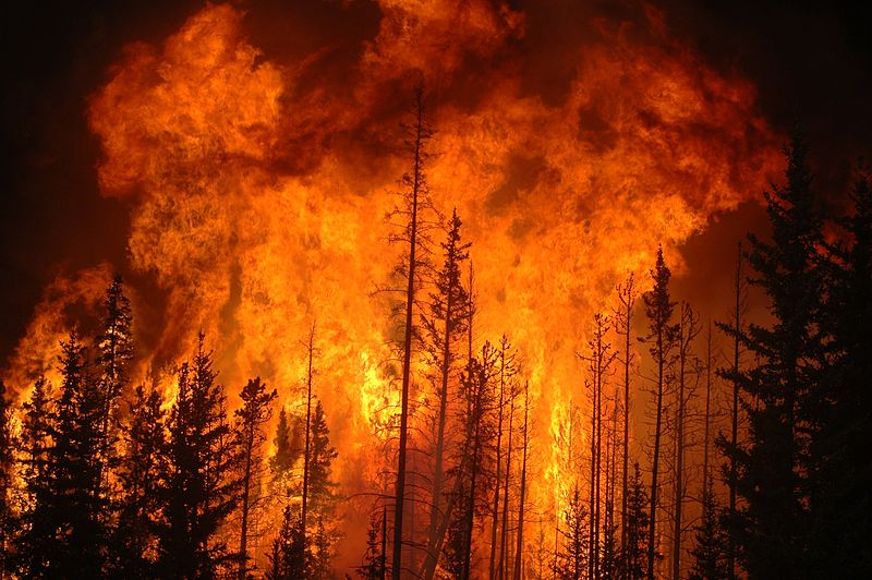 Is the media making the connection between wildfires and climate change? - Environmental Defense Fund