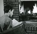 Fireplace don't burn crop reverse.jpg