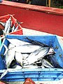 Fish sale at Kalpeni Island IMG 20190930 111653.jpg