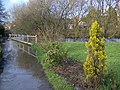 Flooded footpath, Tisbury - geograph.org.uk - 1131611.jpg